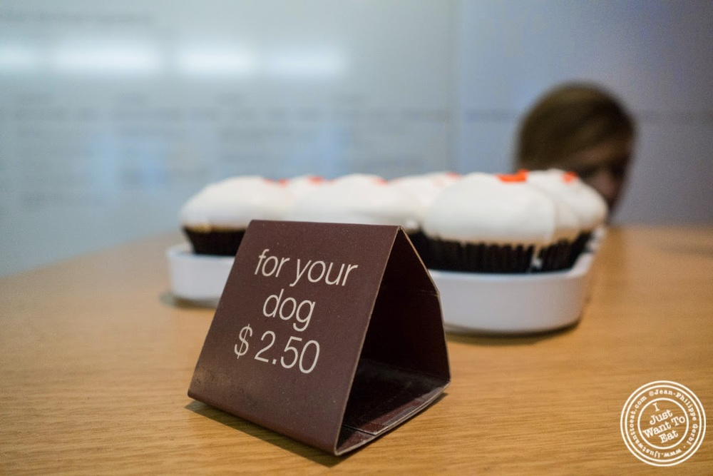 cupcake for dog at Sprinkles Cupcakes in New York, NY