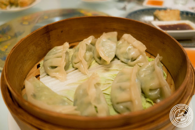 image of vegetable dumplings at Szechuan Gourmet in Midtown West, NYC, New York