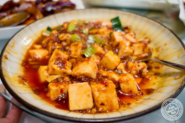 image of Ma Po Tofu at Szechuan Gourmet in Midtown West, NYC, New York