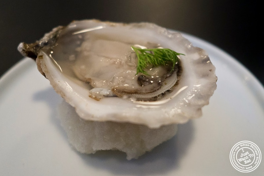 image of oysters at Skál on the Lower East Side, NYC, New York