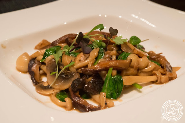 image of Warm wild mushroom salad at Aji 53, Japanese restaurant in Brooklyn, New York