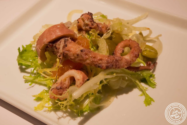 image of braised octopus alla piastra, fennel and grapefruit at Aroma Kitchen and Wine Bar
