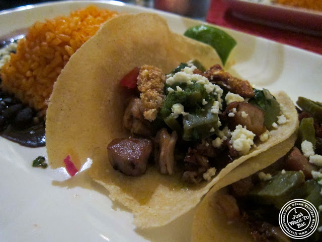 image of Tacos de Lechon at Toloache in NYC, New York
