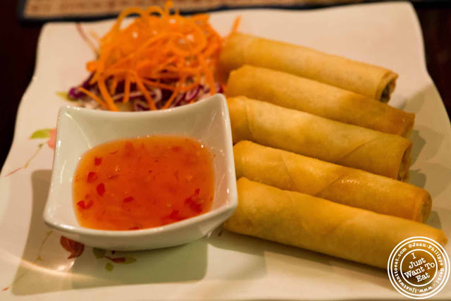 Image of Vegetable spring rolls at Zabb City in NYC, New York