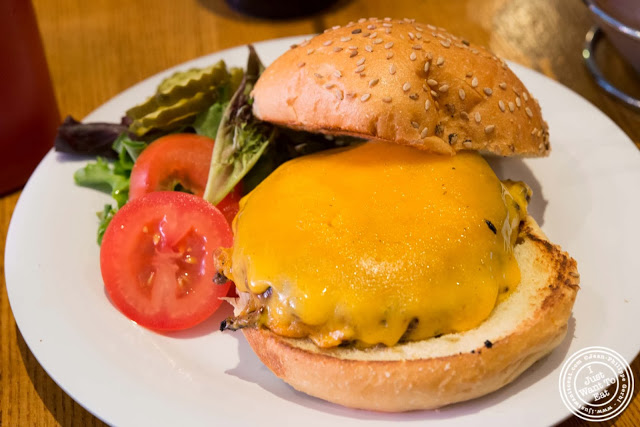 image of cheeseburger at 67 Burger in Brooklyn, New York