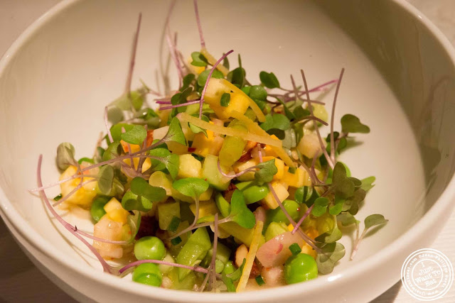 image of squash salad at Gramercy Tavern in NYC, New York