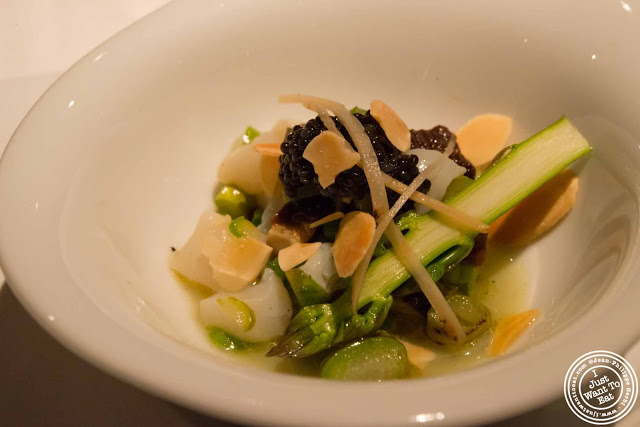 image of marinated scallops with American caviar at Gramercy Tavern in NYC, New York