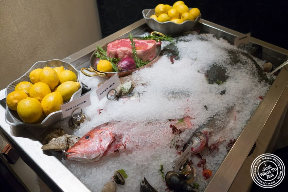 image of seafood display at Circo in NYC, New York