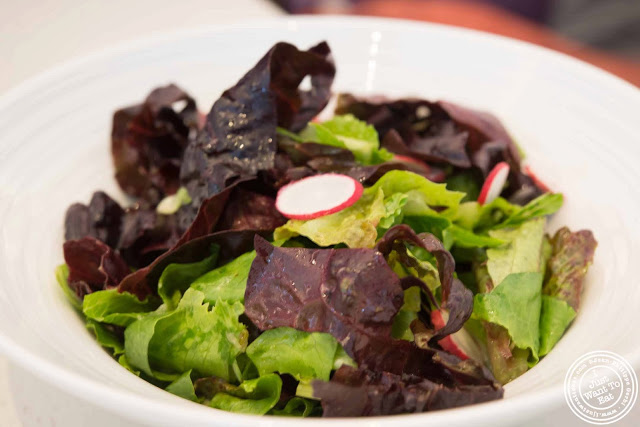 Image of Mixed green salad at Sugar and Plumm in NYC, New York