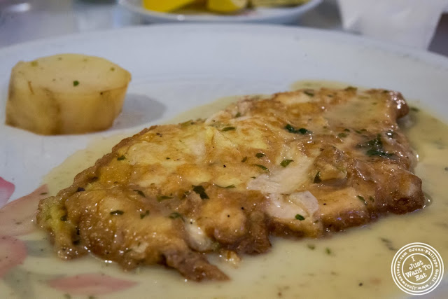 image of chicken Francese at Il Colosseo in Bensonhurst, Brooklyn, New York