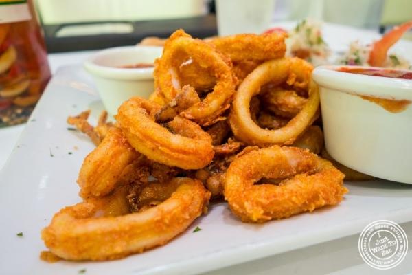 fried calamari with marinara sauce at Don Coqui, Puerto Rican restaurant in Astoria, NY