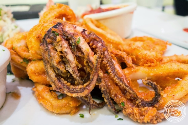 fried calamari with marinara sauce at Don Coqui, Puerto Rican restaurant in Astoria, NY