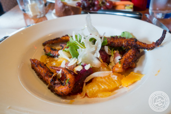 Baby Octopus salad at David Burke's Kitchen in New York, NY