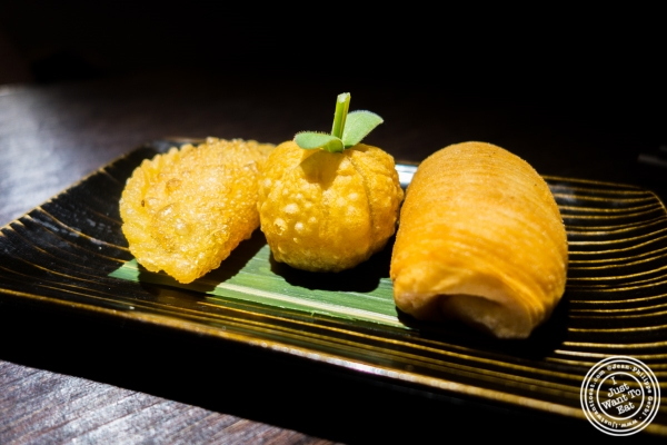 fried dumpling platter at Hakkasan in NYC, NY