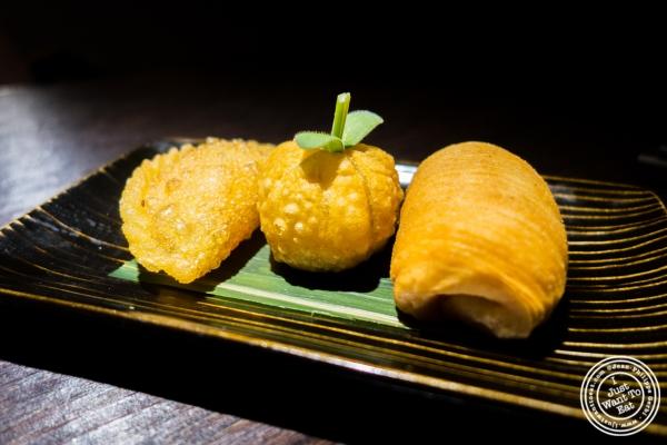 fried dumpling platter at Hakkasan in NYC, NY