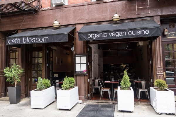 Café Blossom on Carmine, New York, NY