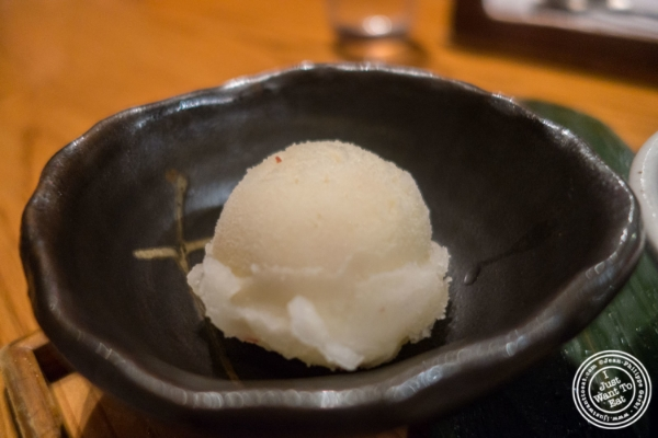 Apple sorbet at En Japanese Brasserie in New York, NY