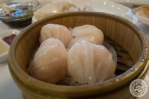 Shrimp dumpling at Oriental Garden in Chinatown - New York, NY