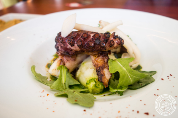 Octopus or Polpo e patate at Torino, Italian Restaurant in New York, NY