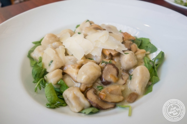 Gnocchi at Torino, Italian Restaurant in New York, NY