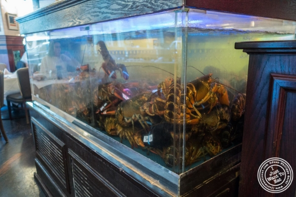 Fish tank at City Lobster and Steak in New York, NY