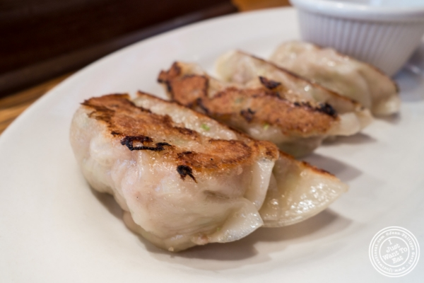 Pork Gyoza at   Terakawa Ramen in NYC, New York