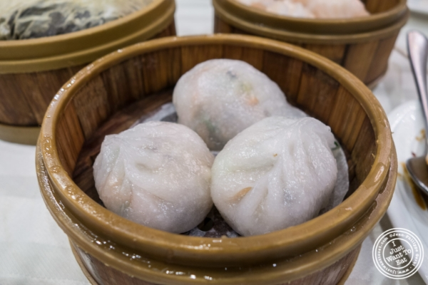 Vegetable dumplings at Jing Fong, Dim Sum Restaurant in Chinatown, New York, NY