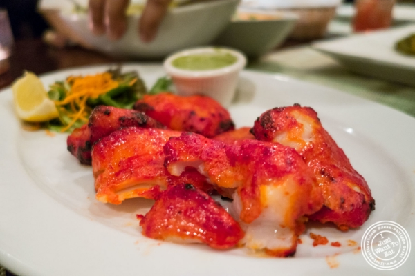 Tandoor fish tikka at Mint, Indian restaurant in Midtown East, NYC, New York