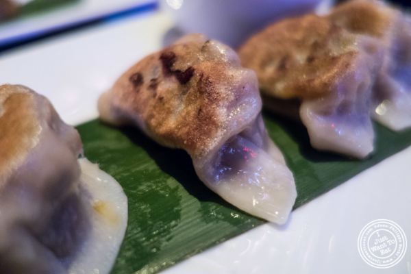 Potstickers at   Koi Soho in the Trump Hotel, NYC, New York