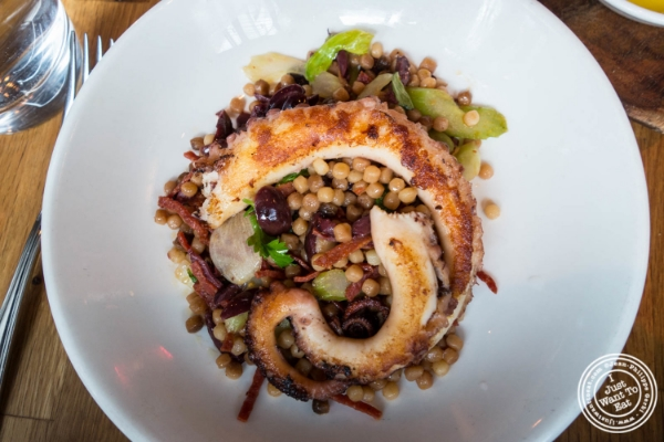 Charred octopus at L'Apicio, Italian-inspired restaurant in Greenwich Village