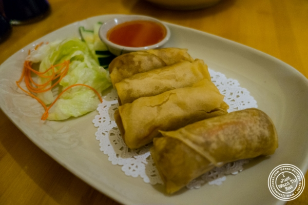 Spring rolls at Pad Thai, Thai restaurant in NYC, New York
