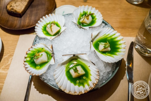 Bay scallops at Little Park in TriBeCa, NYC, New York