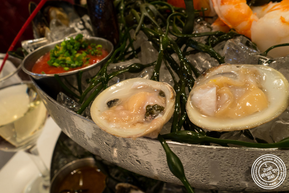 Clams atRue 57 in NYC, New York
