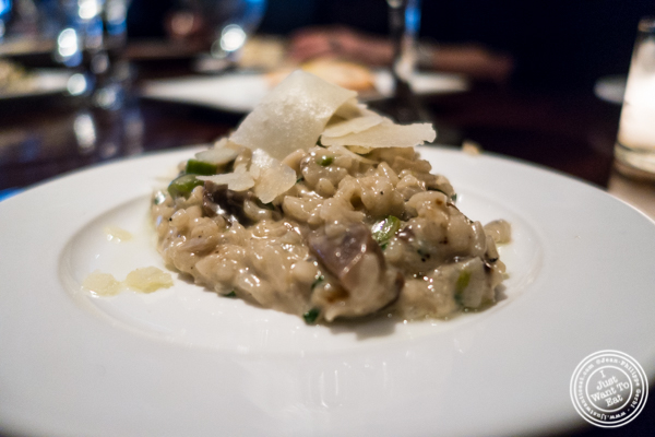 Wild mushroom risotto at Ponty Bistro in NYC, New York
