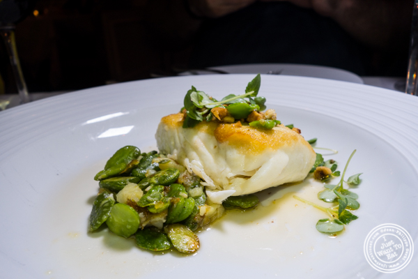 Halibut at Bagatelle in the Meatpacking District, NYC, New York