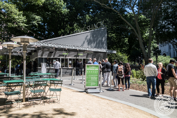 Shake Shack at Madison Square Park, NYC, New York