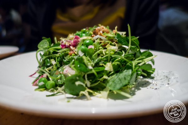 Spring pea salad at L'Artusi, Italian Restaurant in the West Village, NYC, New York