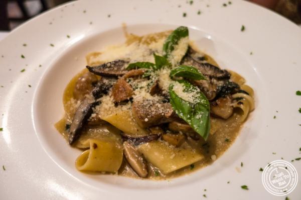Parpadelle atCara Mia, Italian restaurant in Hell's Kitchen