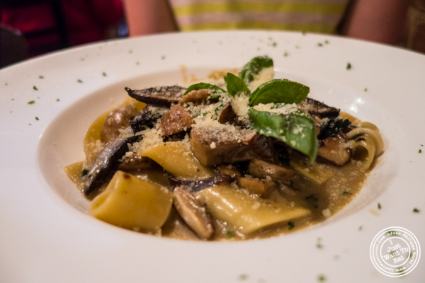 Parpadelle at Cara Mia, Italian restaurant in Hell's Kitchen