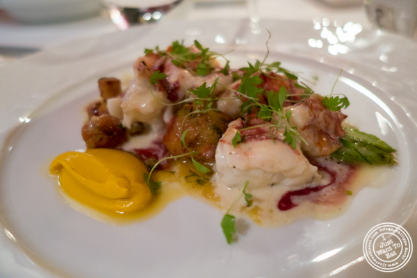 Maine lobster at Bouley in TriBeCa, NYC, New York