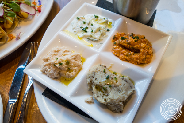 Flight of dips at The Harold in NYC, New York