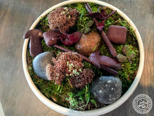 Forrest flavors at Noma in Copenhagen, Denmark