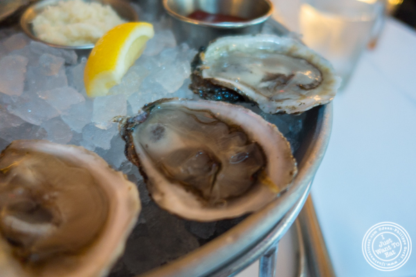 West coast oysters at Blue Water Grill in NYC, New York