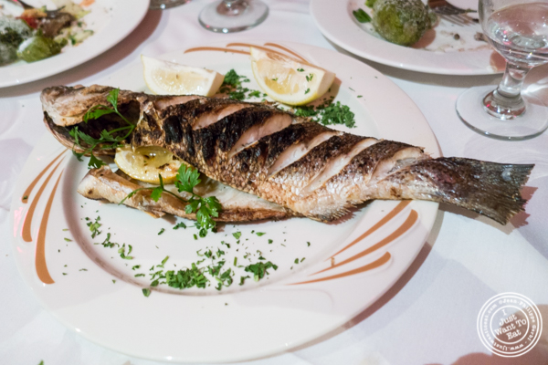 Grilled stripped bass at Byblos, Lebanese restaurant in NYC, New York