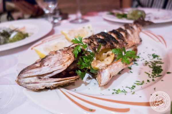 Grilled striped bass at Byblos, Lebanese restaurant in NYC, New York