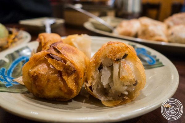 Vegetarian spring rolls at Vegetarian Dim Sum House in ChinaTown, NYC, New York