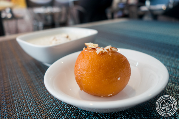Gulab jamun at Tikka Indian Grill in Williamsburg, Brooklyn