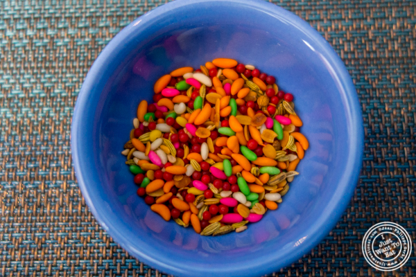 Seeds at Tikka Indian Grill in Williamsburg, Brooklyn