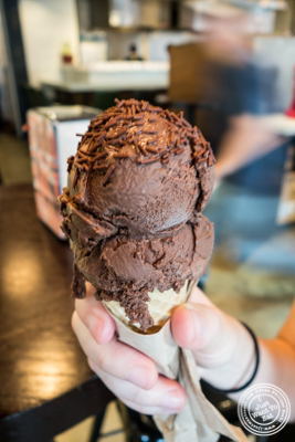 Vegan coconut chocolate ice cream at Ample Hills Creamery at The Gotham West Market in NYC, New York