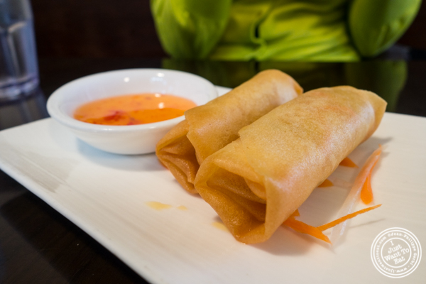 Vegetable Spring Rolls at Ramen Thukpa in the West Village, NYC, New York
